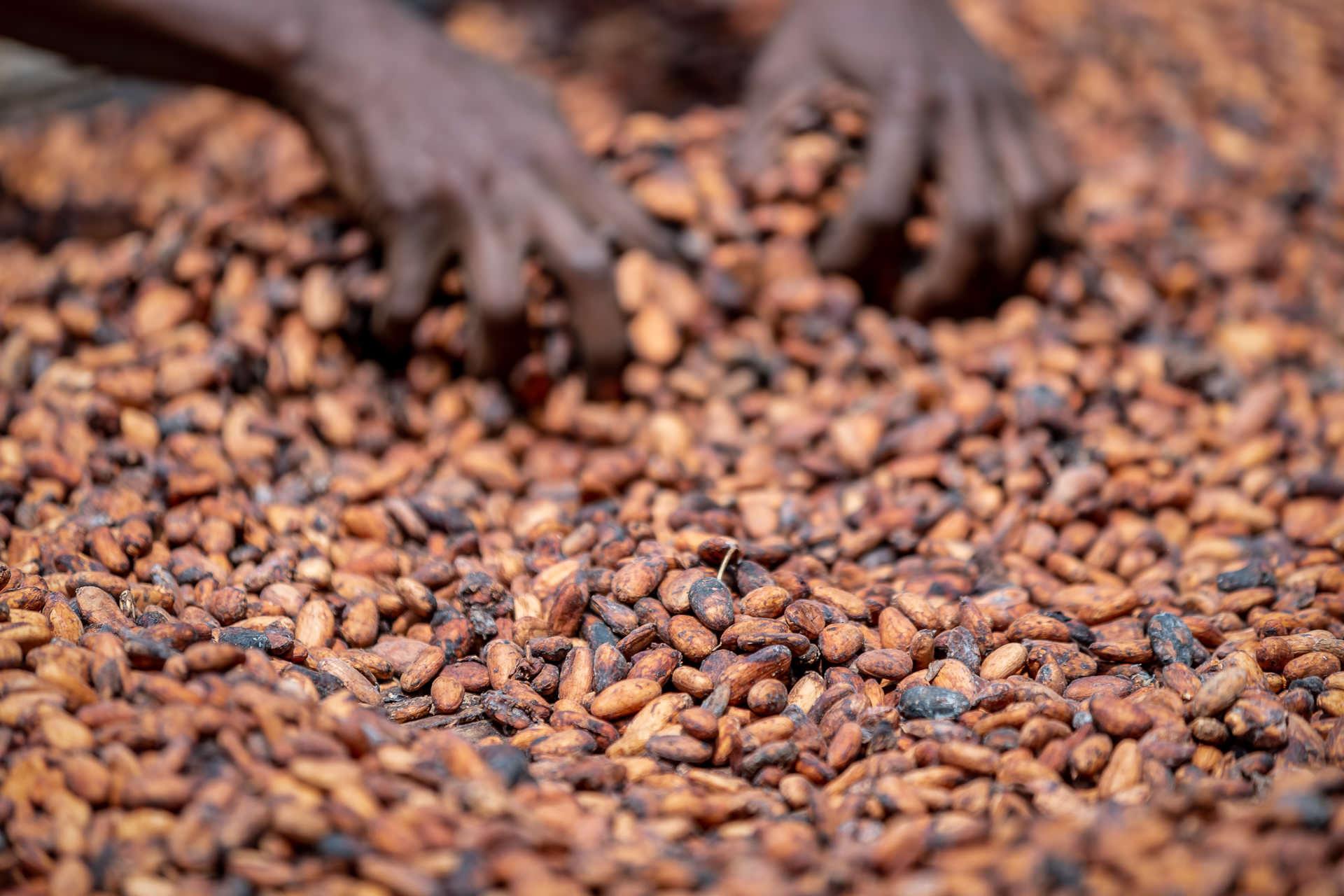 Why Fairtrade?