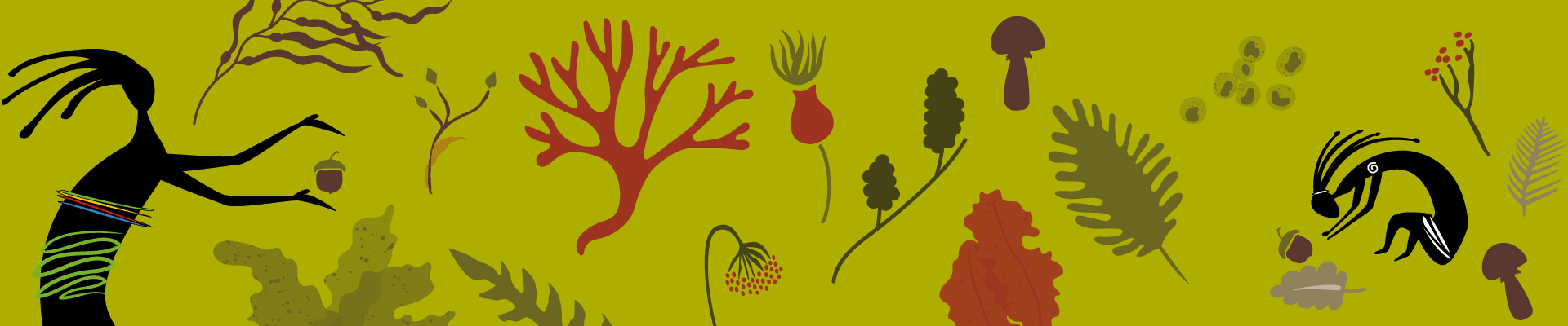 10 Reasons to start foraging